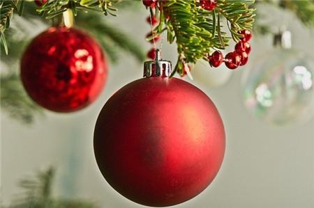 Lưu ý bảo vệ sức khỏe khi trang trí cây thông Noel 1