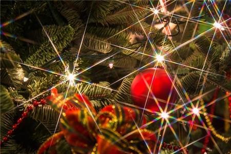 Lưu ý bảo vệ sức khỏe khi trang trí cây thông Noel 2