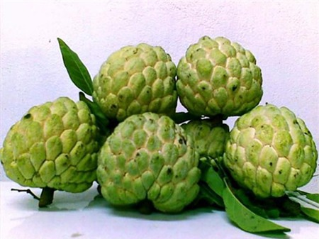 13 loại trái cây càng ăn càng nổi mụn - 5